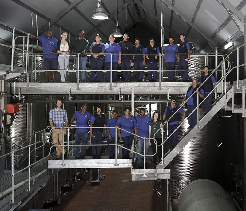 The Faces Of Steenberg Wines